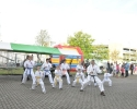 rommelmarkt201129